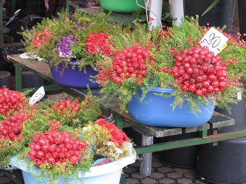 Puestos del Mercado Dolac